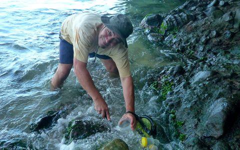 Pêche à pied dans la zone intertidale © Clarisse Rondier / MNHN / MadibenthosPêche à pied dans la zone intertidale © Clarisse Rondier / MNHN / Madibenthos