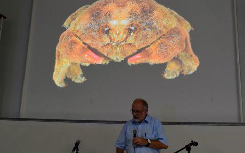 Philippe Bouchet et le crabe nounours © Natacha Ouvrie / MNHN/ Madibenthos